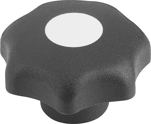 Sterngriff DIN 6336, Form G, ohne Buchse, lichtgrau, Thermoplast