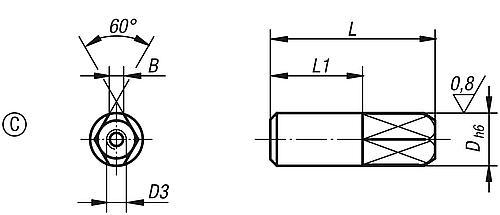 Aufnahmebolzen Form C, abziehbar